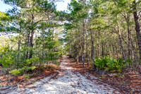 ForestLakes20140409_001HDR
